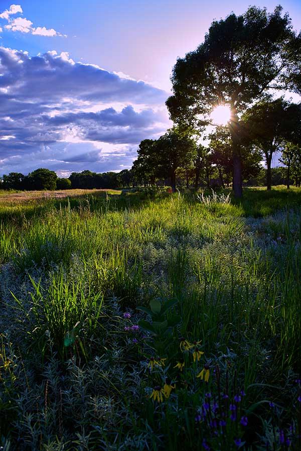 Prairie Light, Photograph by Brad Nordlof