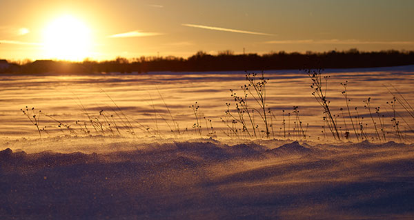 Winter Desert - Photography by Brad Nordlof