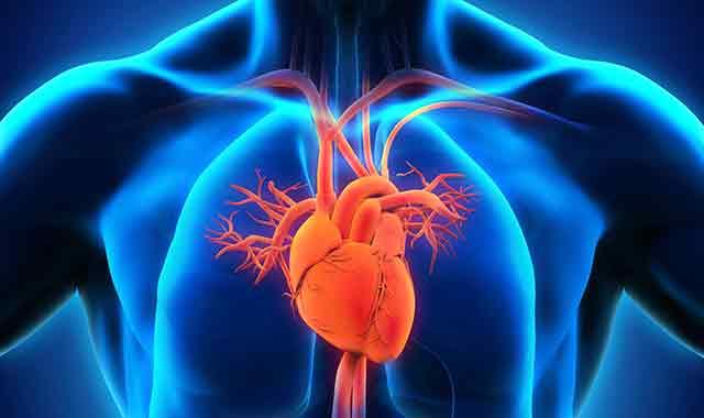 Health-Hospitals-Heart-Sum15