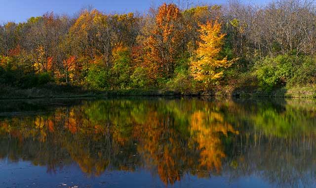 Reflections, by Brad Nordlof