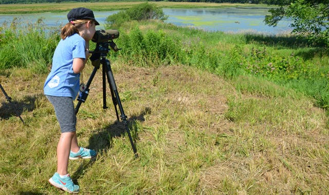 Explore nature with your young scout during Family Nature Day, June 23, at Nygren Wetland Preserve, in Rockton, Ill.