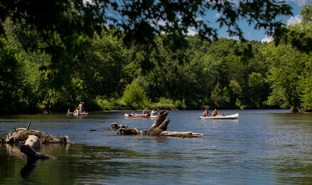 At Kishwaukee Paddlefest, participants can enjoy about two hours of kayaking before arriving at a riverbank party complete with food, music and merchandise for purchase. (Dawn Wulf Photography photos)